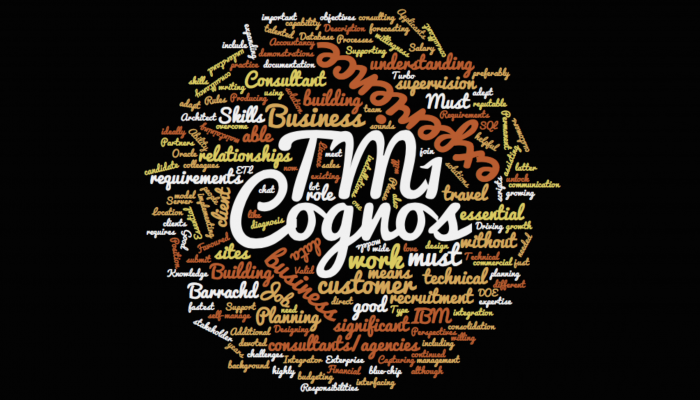 Want to work with us? We need a Cognos TM1 Consultant