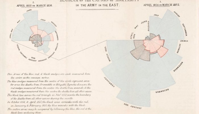 "Nightingale - Diagram of the Causes of Mortality in the Army in the East"", Florence Nightingale (1858)"